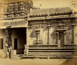 Side entrance to Jalakanteshvara Temple, Vellore 2590